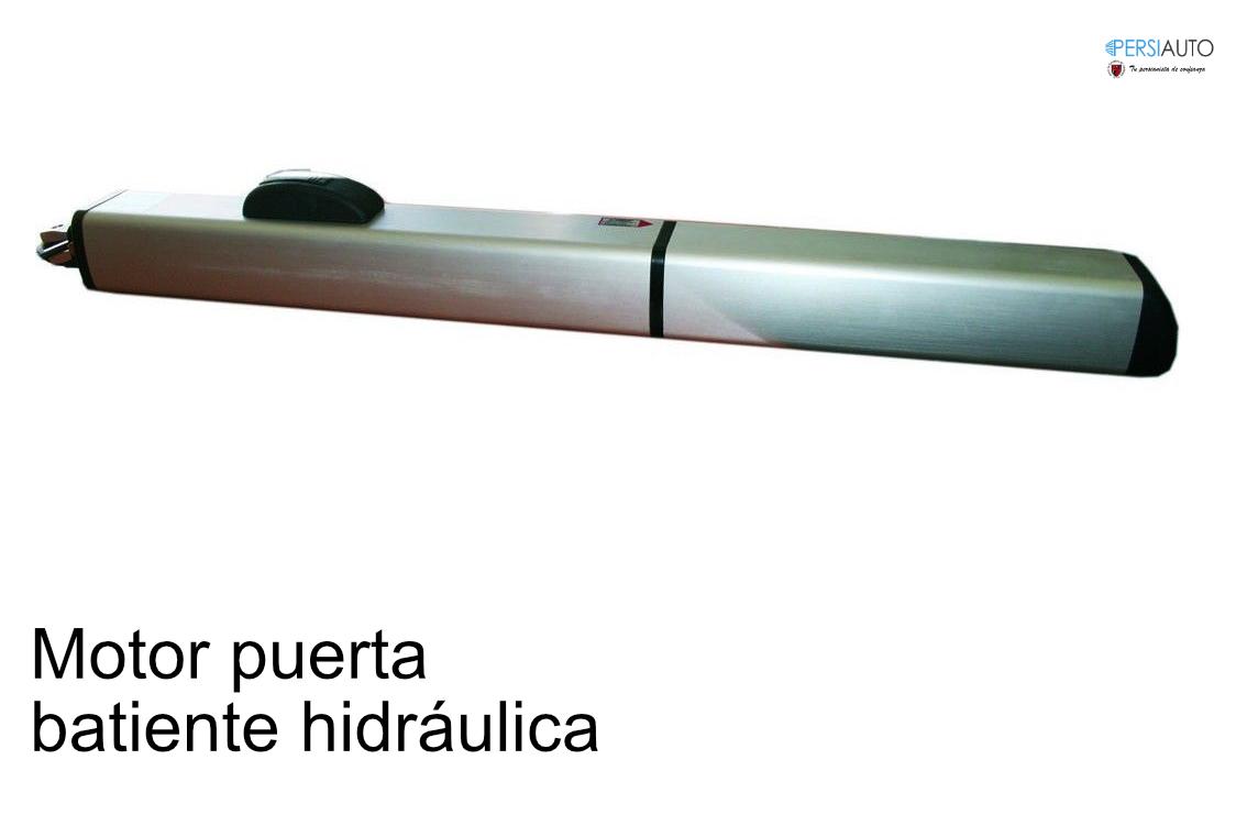 Motor hidráulico puerta batiente
